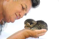 Senior woman holding kitten Stock Photography