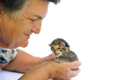 Senior woman holding kitten Royalty Free Stock Photography