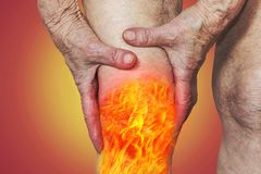 Senior woman holding the knee with pain Stock Photos