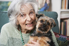 Senior Woman Holding Pet Dog Indoors Stock Images