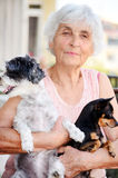 Senior woman hugging her dogs Stock Images