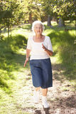 Senior Woman Jogging In Park Stock Images