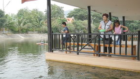 Senior woman and kids feeding fish stock video footage