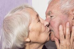 The senior woman kissing old man stock photo