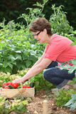 Senior woman in kitchen garden Stock Photos