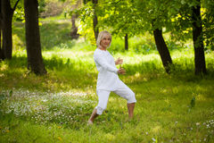 Senior woman kung fu Stock Photo