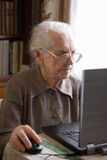 Senior woman with laptop. Senior woman in glasses working with laptop Royalty Free Stock Images