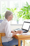 Senior woman laptop bills receipts. Senior woman at home with a calculator and lots of receipts in front of her laptop making her annual tax declaration, white Royalty Free Stock Photo