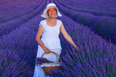 Senior woman in the lavander fields. Royalty Free Stock Photography