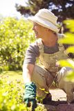 Senior woman looking away smiling while gardening Stock Photo