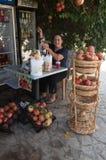 Senior woman making fresh pomegranate fruit juice Royalty Free Stock Image