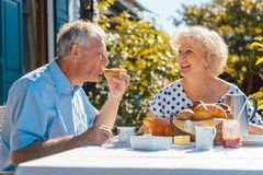 Senior woman and man having breakfast sitting in their garden outdoors stock photos