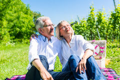 Senior woman and man having picnic on meadow Stock Image