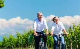 Senior woman and man having picnic on meadow Royalty Free Stock Photos