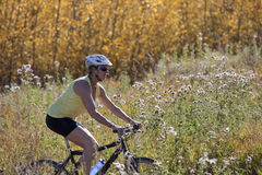 Senior Woman Mountain Biking Stock Images