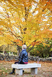 Senior woman mourning in cemetery. A back view of an elderly woman sitting on a bench in a cemetery in Autumn stock images