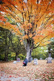 Senior woman mourning in cemetery. A side view of an elderly woman kneeling at a headstone in a cemetery in Autumn stock photography