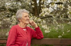 Senior woman outdoor portrait in Spring. Taken with copy space stock photography