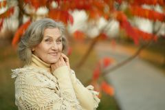 Senior woman in park autumn park Royalty Free Stock Images