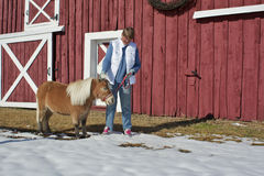 Senior Woman Petting Miniature Horse Stock Photo