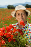 Senior woman picking flowers on the poppy field Royalty Free Stock Photos
