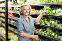 Senior woman picking out some vegetables Stock Photos