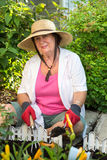 Senior woman planting flowers in the garden Royalty Free Stock Image