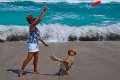 Senior Woman Playing with Dog on a Florida Beach. A healthy, fit, mature woman throws a toy into the ocean as her dog runs after it Stock Images