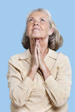 Senior woman praying with hands clasped against blue background Stock Images