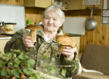 Senior woman preparing mushrooms Royalty Free Stock Photography