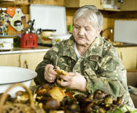Senior woman preparing mushrooms Stock Images