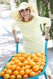 Senior Woman Pushing Wheelbarrow Stock Photography