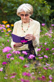 Senior woman reading amongst summer flowers Royalty Free Stock Photos