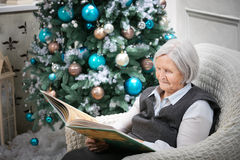 Senior woman reading a book. Beside a Christmas tree Stock Photography