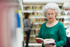 Senior woman reading and choosing book in library. Portrait of old retired woman choosing book in library and taking it from shelf Royalty Free Stock Images