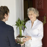 Senior woman receiving gift. Attractive senior woman receiving gift of bamboo plant at front door Stock Photography