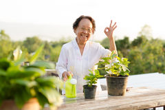 Senior woman relax at home Stock Image