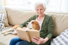 Senior Woman Relaxing at Home with Pet royalty free stock image