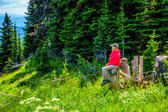 Senior Woman resting on a tree stump during a hike through the mountain alpine meadows with wild Flowers on Tod Mountain Royalty Free Stock Image