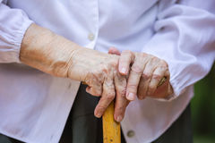 Senior woman`s hands holding walking stick Stock Photography