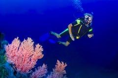 Senior woman scuba diving. KHAO LAK, THAILAND - NOVEMBER 24: Senior woman scuba diving underwater in Similan Islands on November 24, 2009 . Similan Islands are stock image