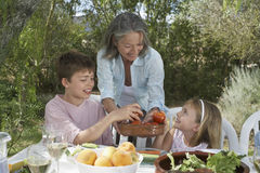 Senior Woman Serving Fruit To Kids Royalty Free Stock Image