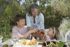 Senior Woman Serving Fruit To Kids Royalty Free Stock Image