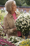 Senior woman shopping for flowers in garden centre, holding pot plant, smiling, side view Royalty Free Stock Images