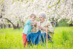 Senior woman showing something in hand to great grandson while relaxing in orchard Royalty Free Stock Photo