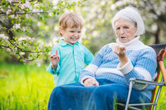 Senior woman showing something in hand to great grandson while relaxing in orchard Stock Photos