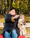 Senior woman sitting on a bench with a dog Royalty Free Stock Images
