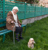 Senior woman sitting on a bench Stock Image