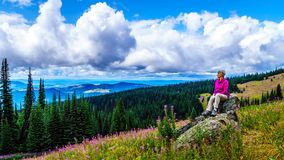 Senior woman sitting on a large rock in the high alpine surrounded by pink Fireweed flowers. During a hike to Mount Tod at Sun Peaks village in the Shuswap Stock Photo