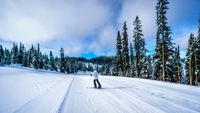 Senior Woman skiing in a Winter Landscape in the High Alpine Royalty Free Stock Image